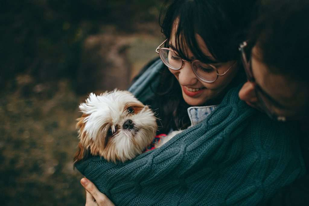 First Signs of Kennel Cough